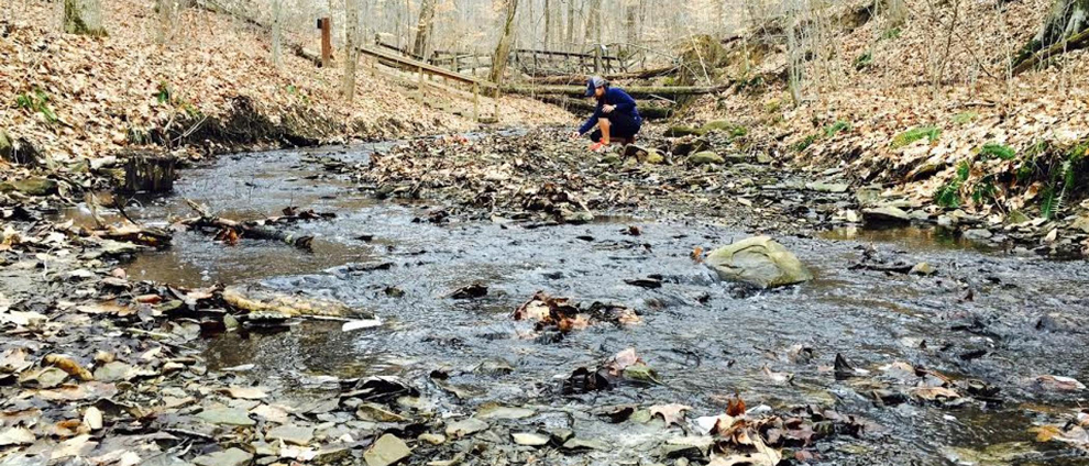 Creek with shale bordering the natural play area at Slate Run Metro Park, with a woman searching in leaf litter for critters