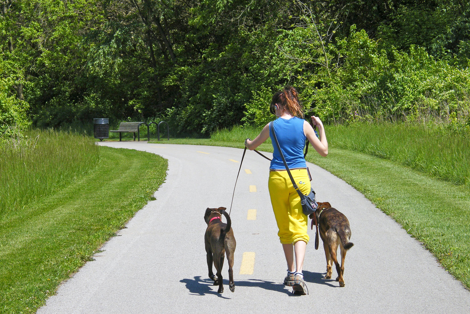 Visitor walks two dogs on the Blacklick Creek Greenway Trail