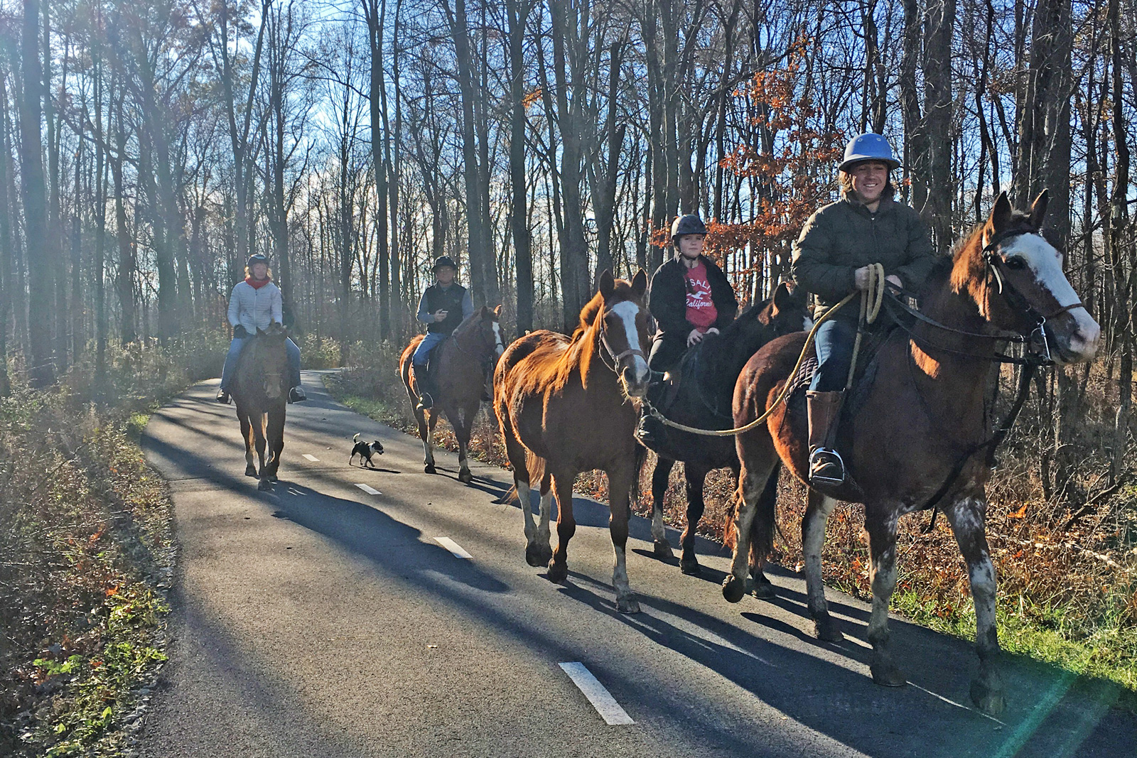 Horse riders enjoy a late fall ride on the Beech Woodland Trail at Rocky Fork.