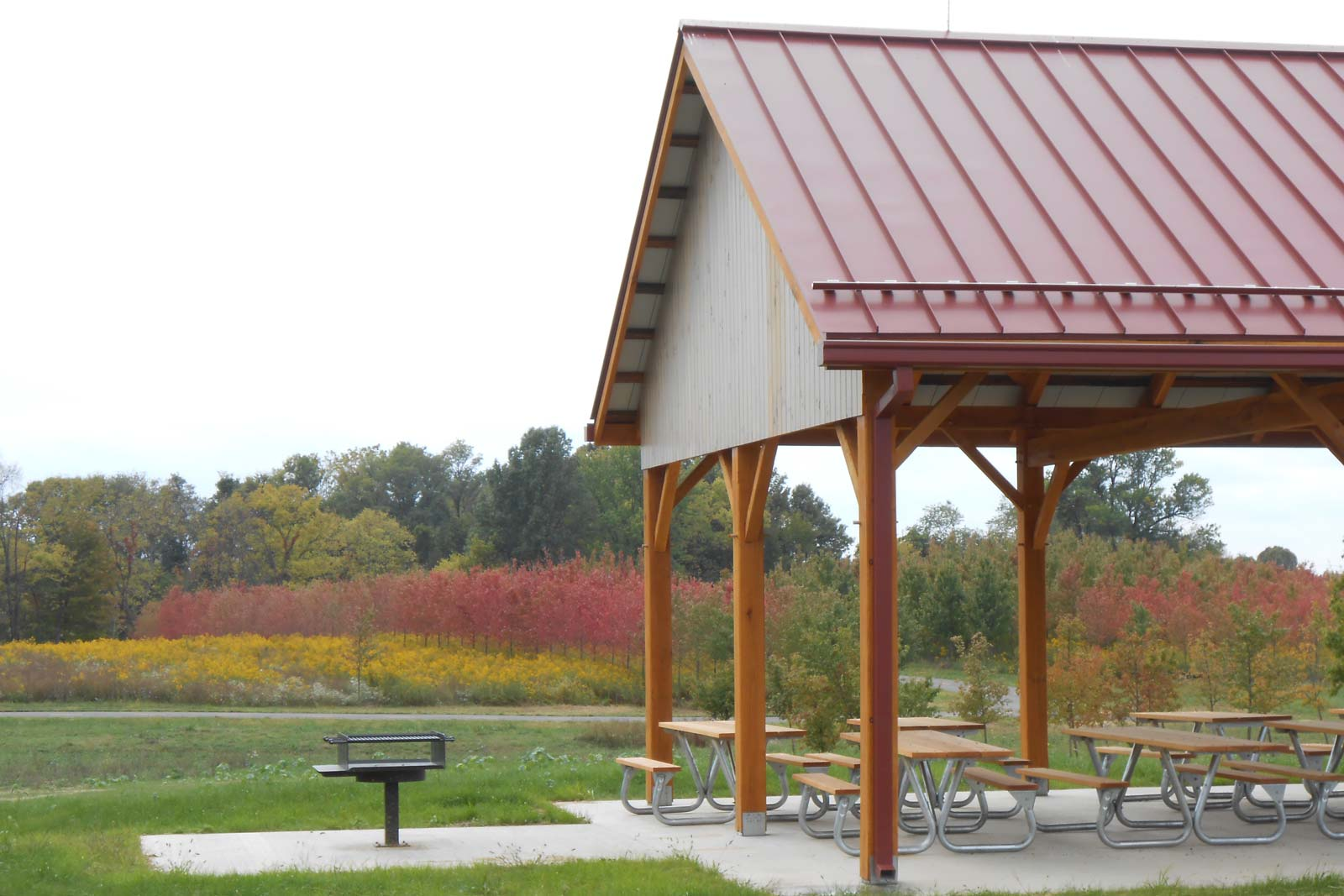 Walnut Woods in autumn. Picnic shelter and grill in the Buckeye Area.