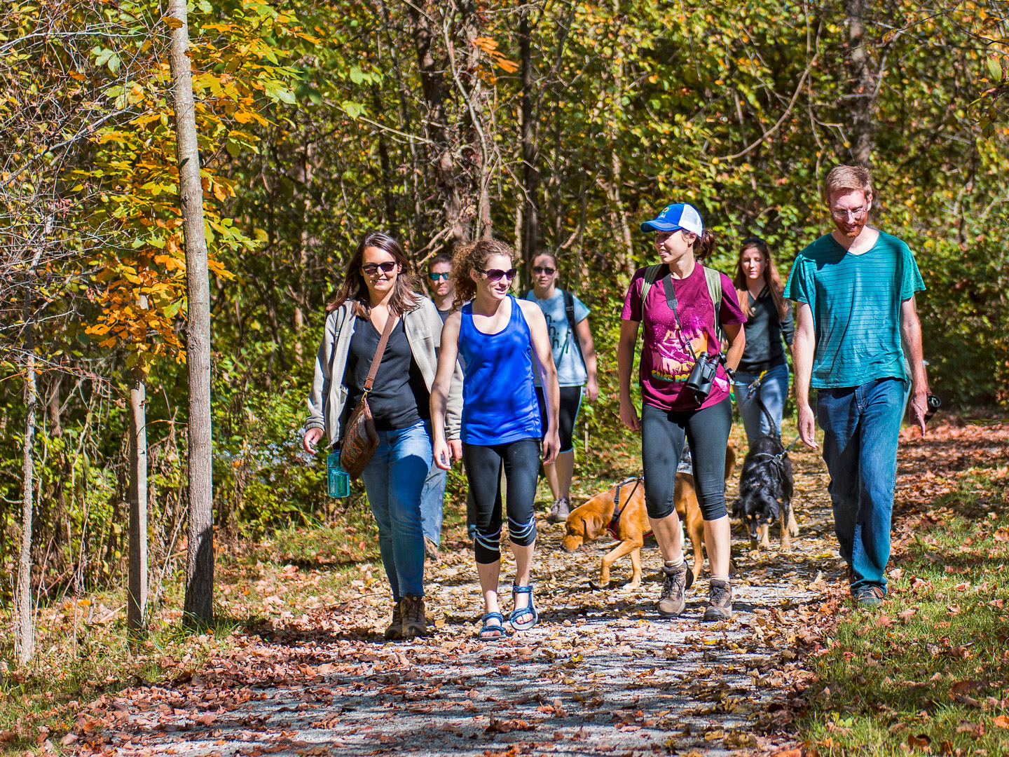 Visitors walk their dogs in the fall sunshine at Battelle Darby Creek. (John Nixon)