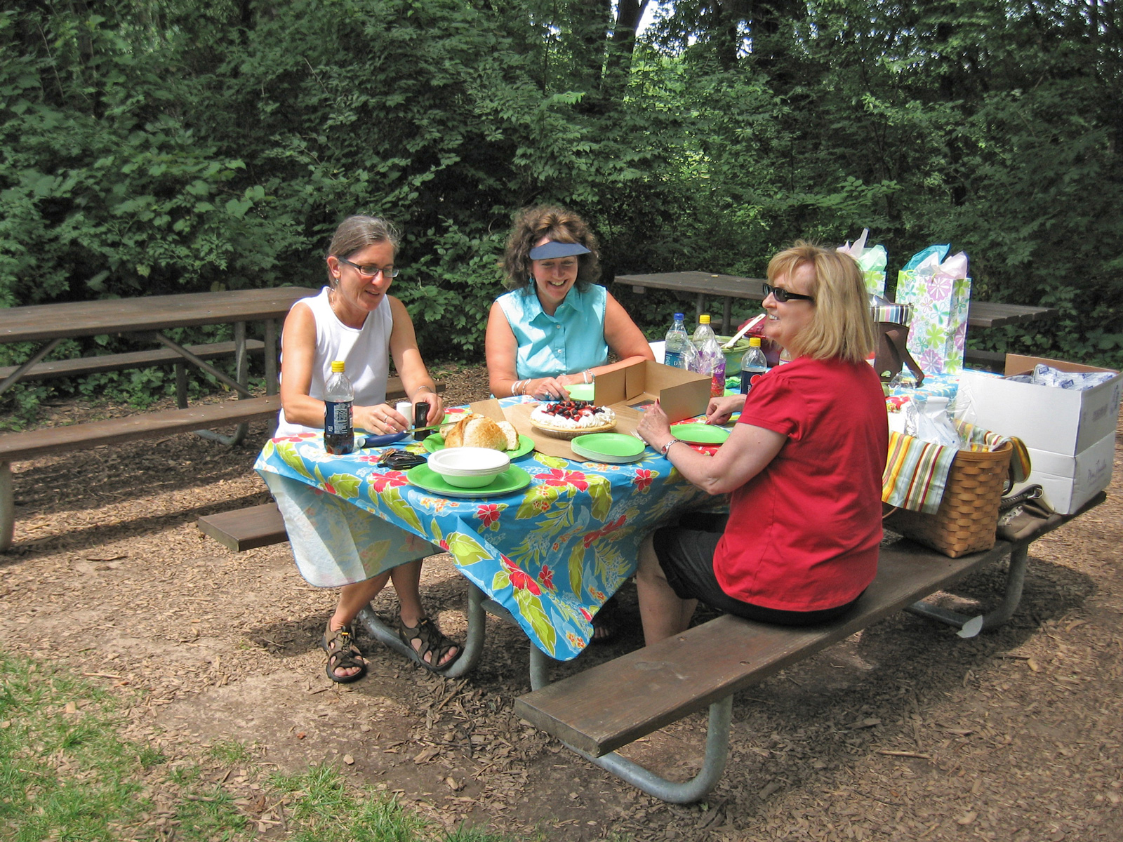 Picnicking at Slate Run's Buzzard's Roost Picnic Area
