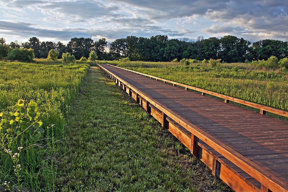 Boardwalk at Glacier Ridge