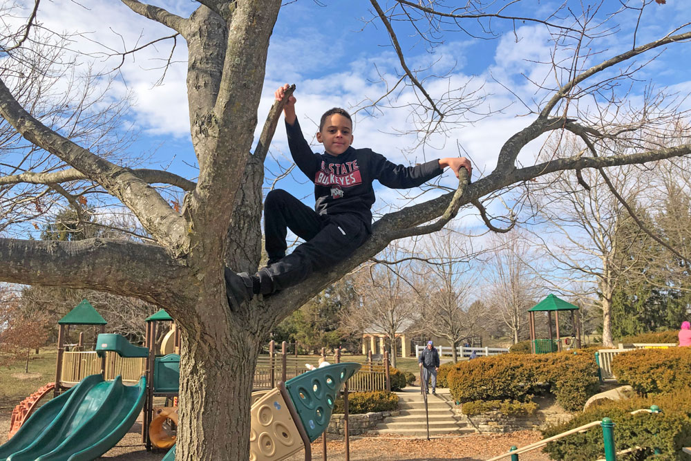 A child climbs in a tree near a playground at Homestead Metro Park.